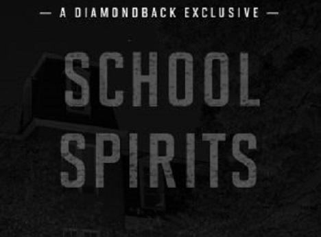 Diamondback School Spirits-468-345-png-gs
